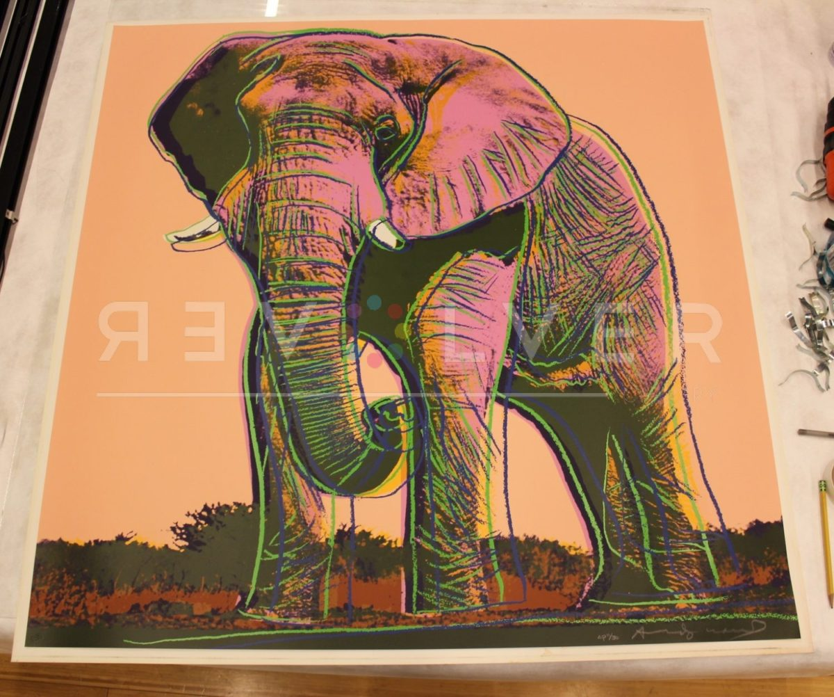 Andy Warhol African Elephant 293 screenprint out of frame and laying on a table.
