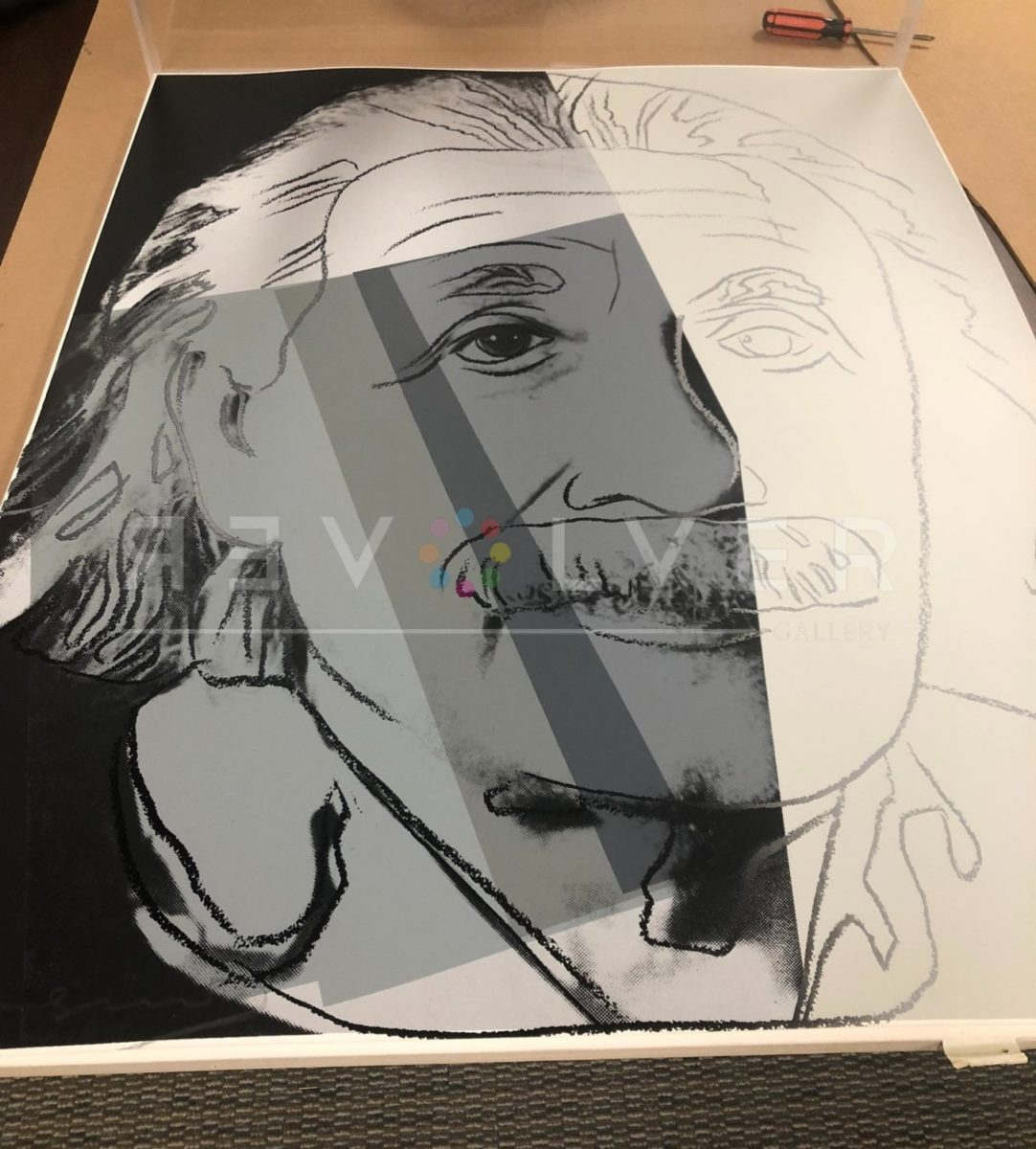 Andy Warhol Albert Einstein 229 screenprint out of frame and laying on a table.