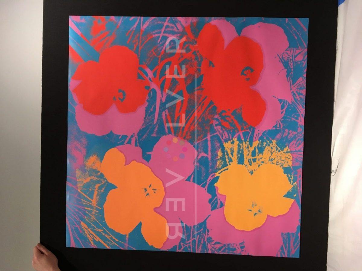 Andy Warhol Flowers 66 screenprint out of frame.