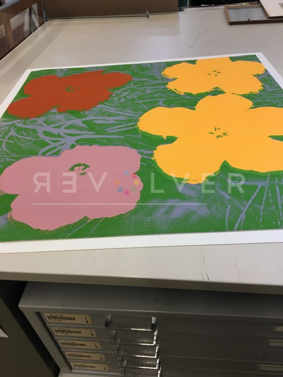 Picture of Flowers 65 (FS II.65), 1970, Green Yellow Pink Red, Out of Frame, by Andy Warhol