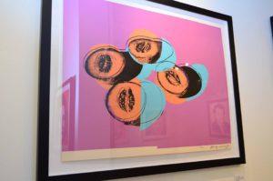 Andy Warhol - Space Fruits: Cantaloupes II F.S. II 198 framed jpg