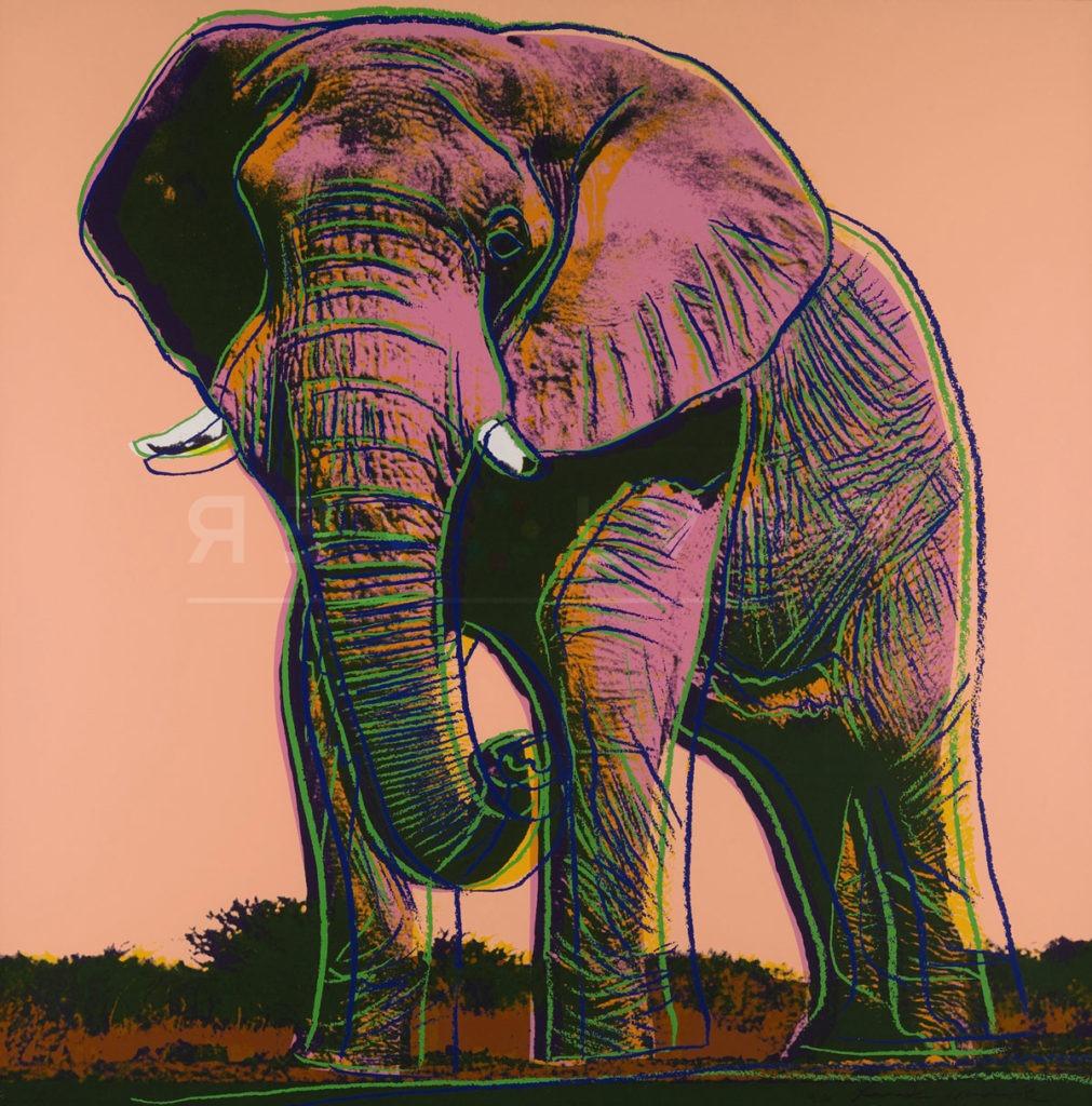 Andy Warhol - African Elephant F.S. II 293 jpg