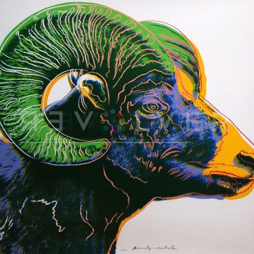 Andy Warhol – Bighorn Ram F.S. II 302 jpg