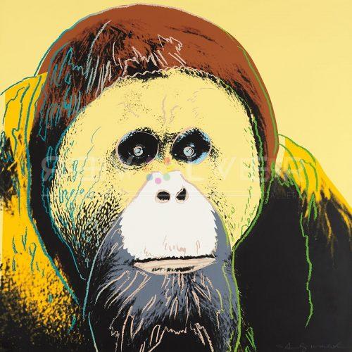 Andy Warhol - Orangutan F.S. II 299 jpg
