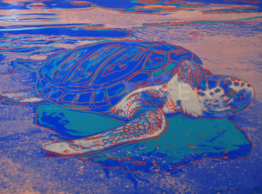 Andy Warhol - Turtle F.S. II 360A jpg