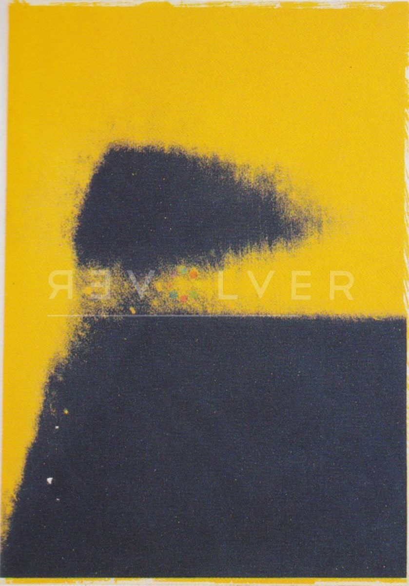 Andy Warhol - Shadows FS-II-204 jpg
