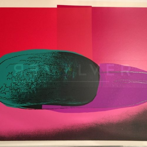 Andy Warhol – Space Fruits: Watermelon F.S. II 199 jpg
