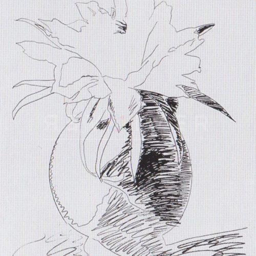 Andy Warhol – Flowers (Black and White) F.S. II 104 jpg