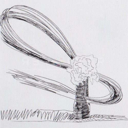 Andy Warhol – Flowers (Black and White) F.S. II 107 jpg