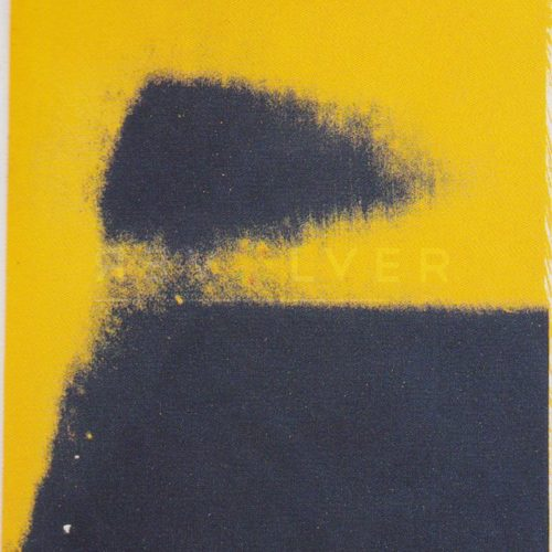Andy Warhol - Shadows F.S. II 204 jpg