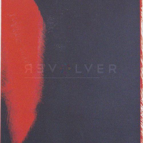 Andy Warhol – Shadows F.S. II 205 jpg