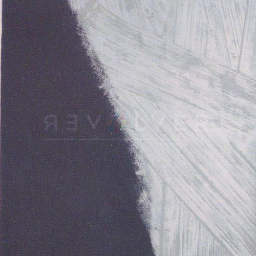Andy Warhol - Shadows F.S. II 209 jpg
