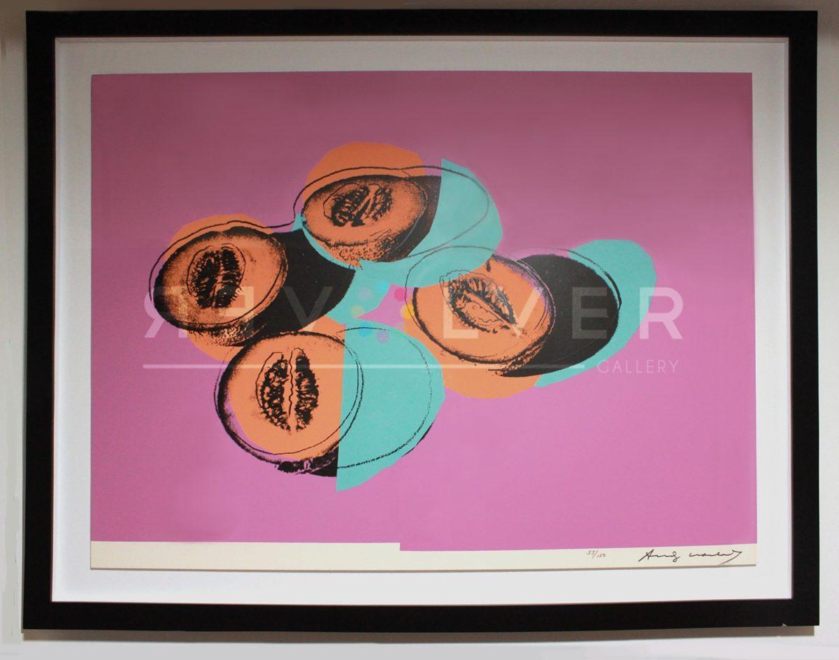 Andy Warhol - Space Fruits: Cantaloupes F.S. II 198 framed jpg