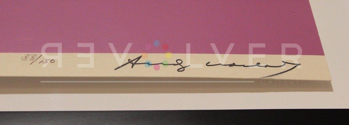 Andy Warhol - Space Fruits: Cantaloupes F.S. II 198 sig blur jpg