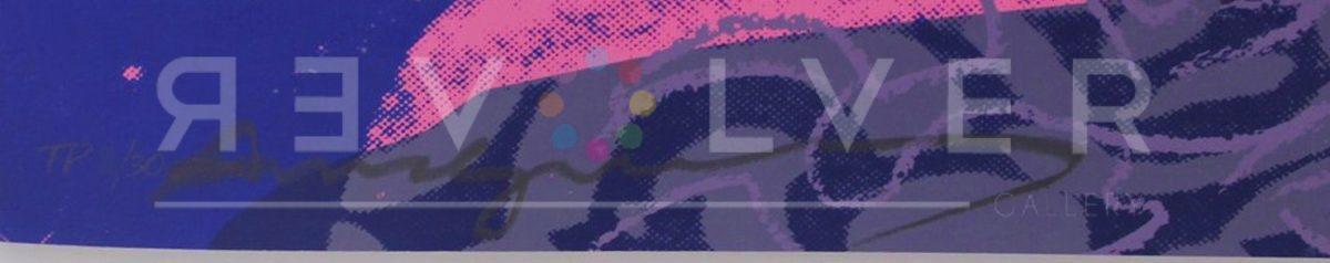 Andy Warhol - Queen Ntombi F.S. II 346 TP sig blur jpg