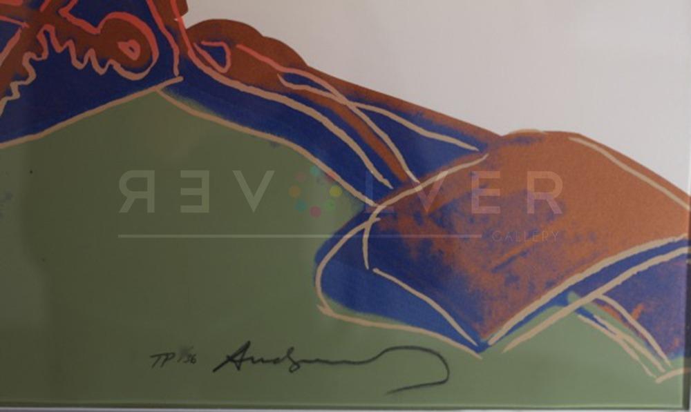 Andy Warhol - Teddy Roosevelt F.S. II 386 TP sig blur jpg