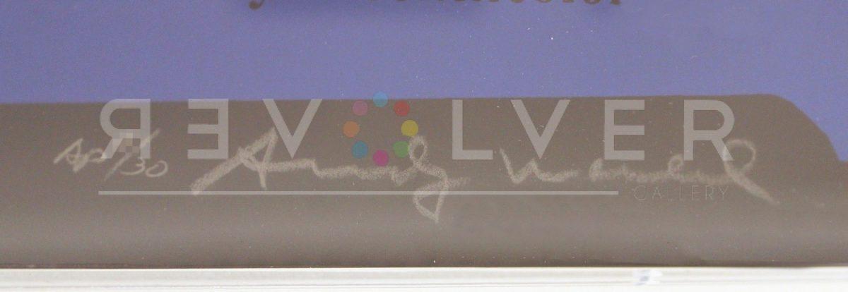 Andy Warhol - Van Heusen F.S. II 356 sig blur jpg