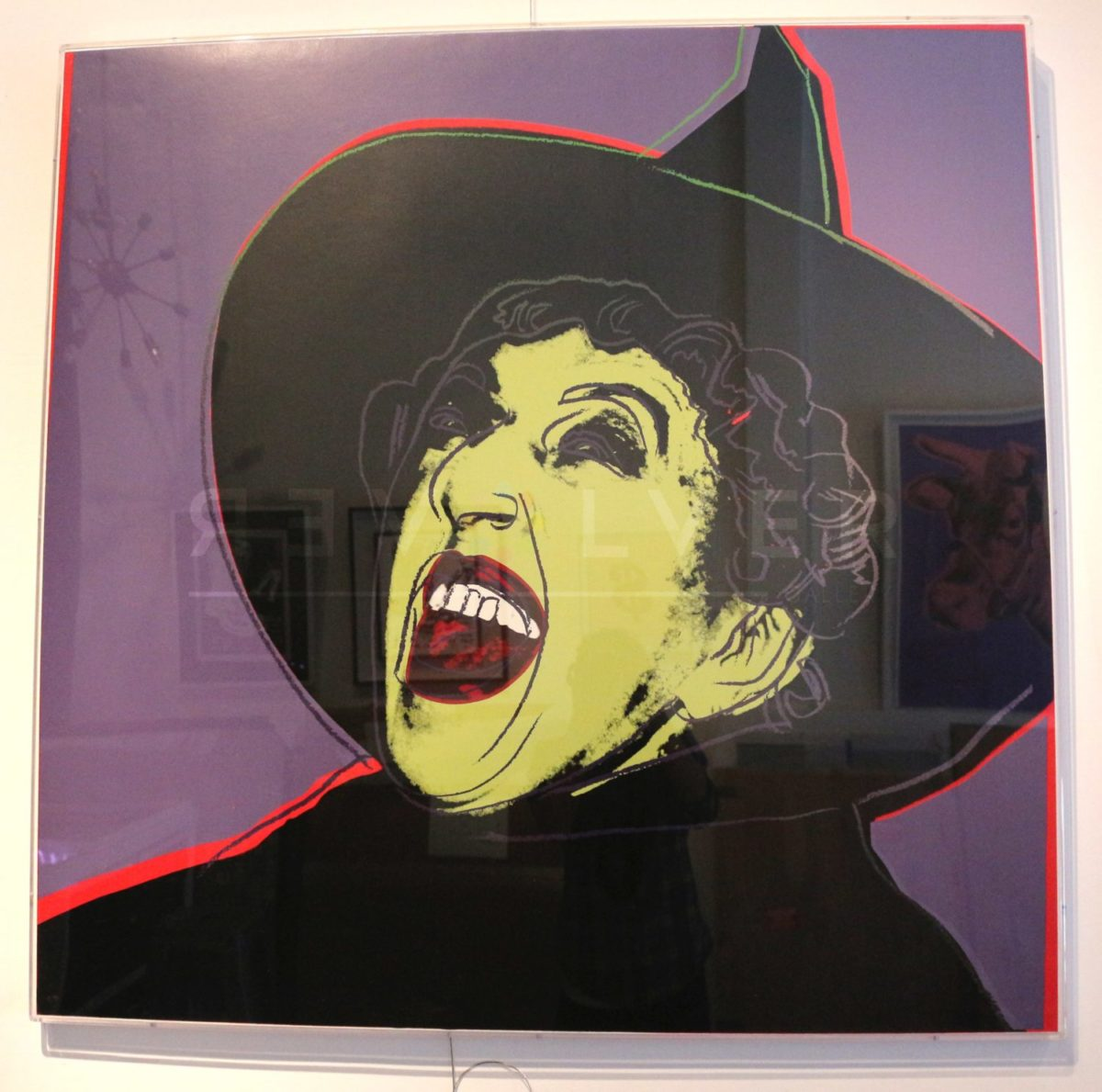 Andy Warhol - The Witch F.S. II 261 framed jpg