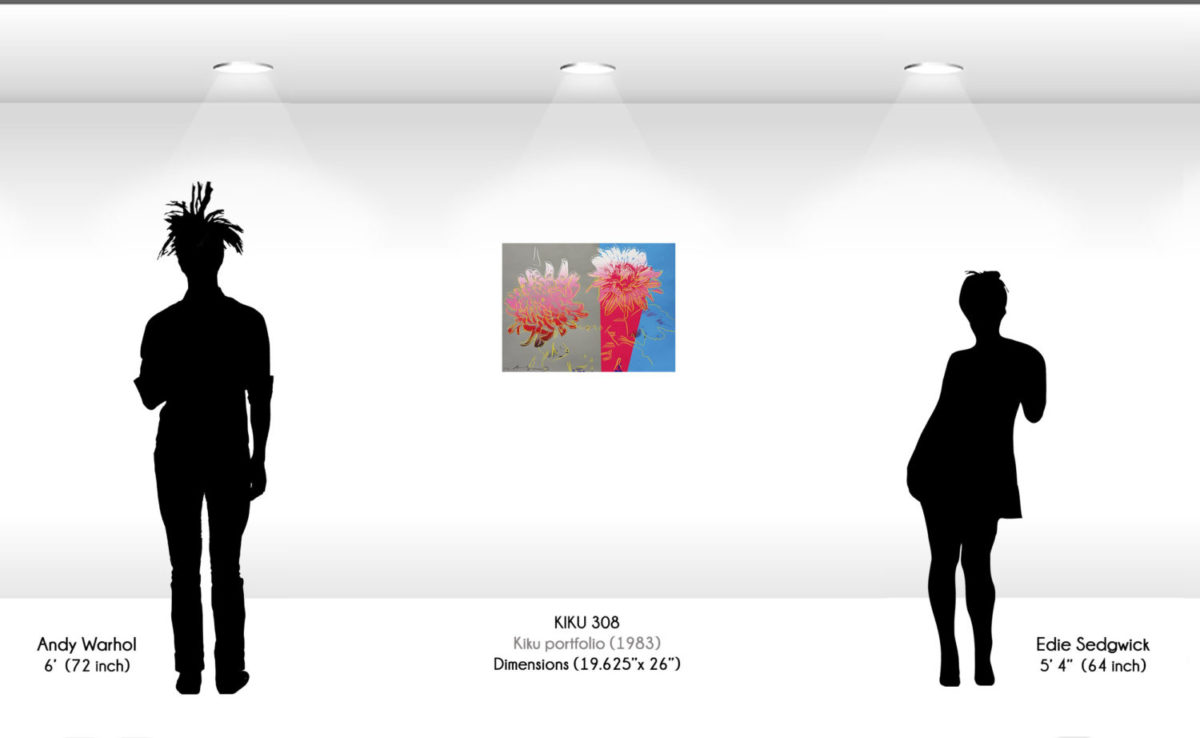 Size comparison image for Andy Warhol's Kiku 308 screenprint, which is 19 and 5/8th inches by 26 inches.
