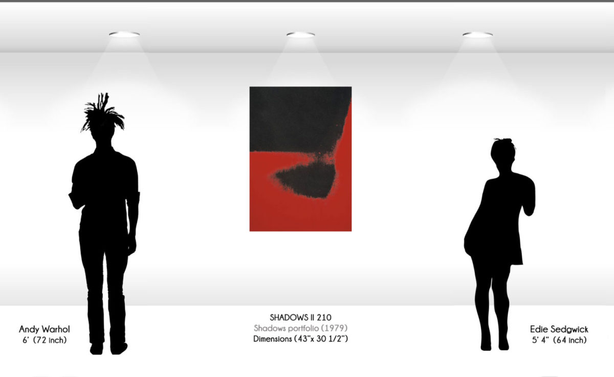 Andy Warhol - Shadows F.S. II 210 wd jpg