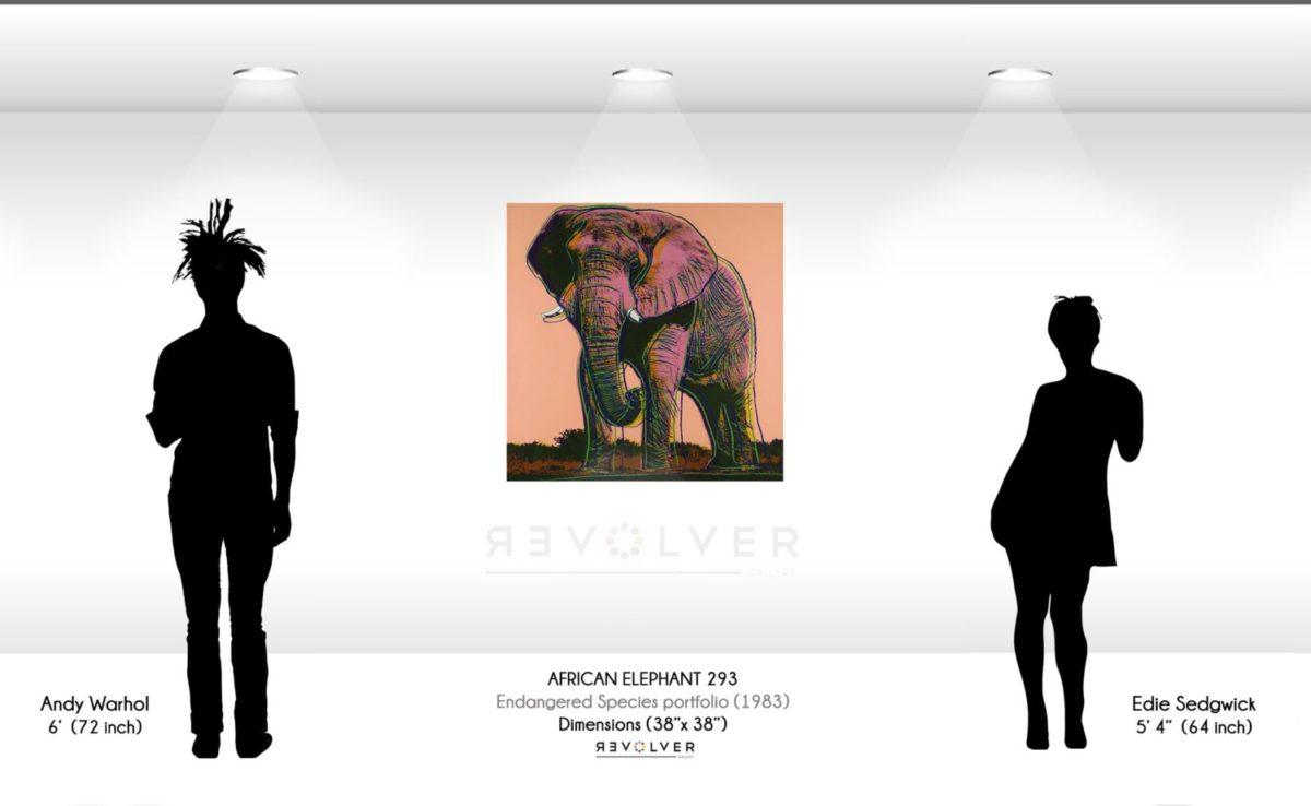 Andy Warhol African elephant 293