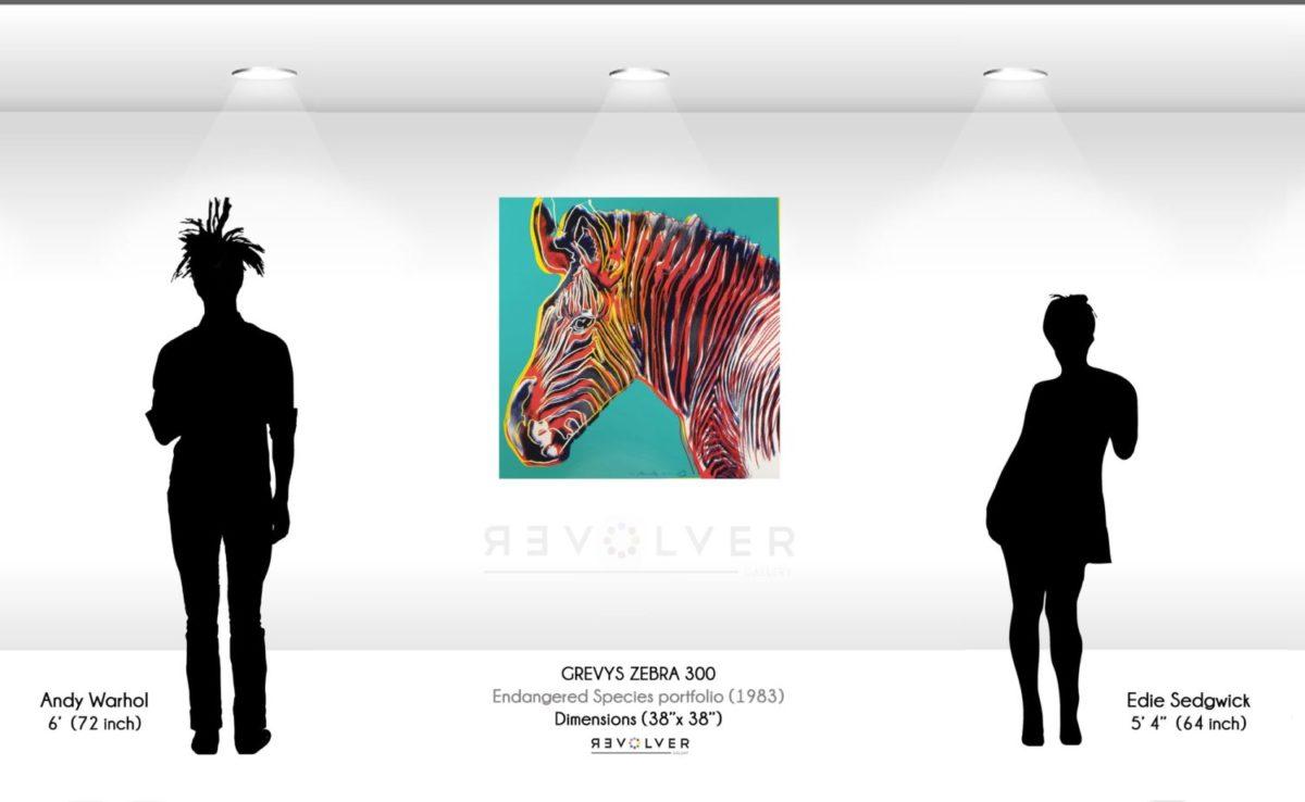 Andy Warhol Grevys zebra 300