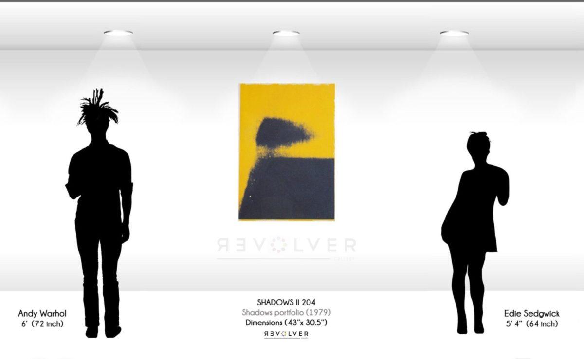 Warhol Shadows II 204 Wall Displa