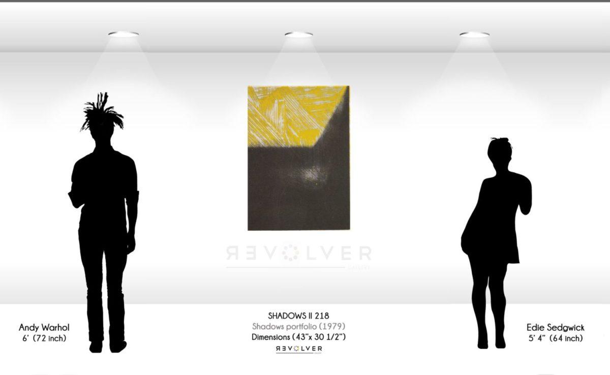 Warhol Shadows II 218 Wall Display