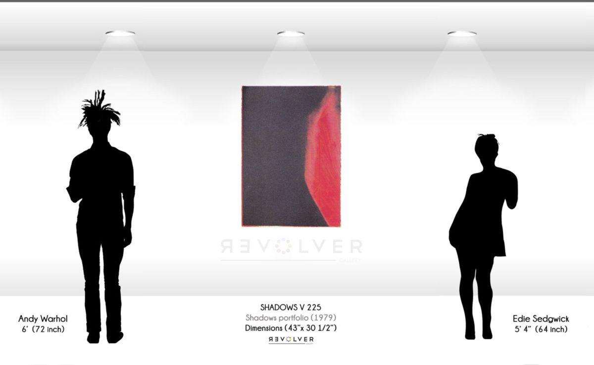 Warhol Shadows V 225 Wall Display