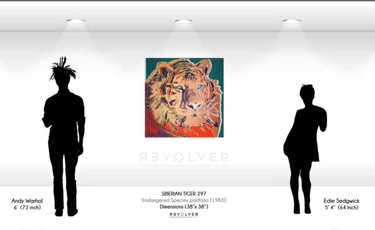 Warhol Siberian Tiger 297 Wall Display