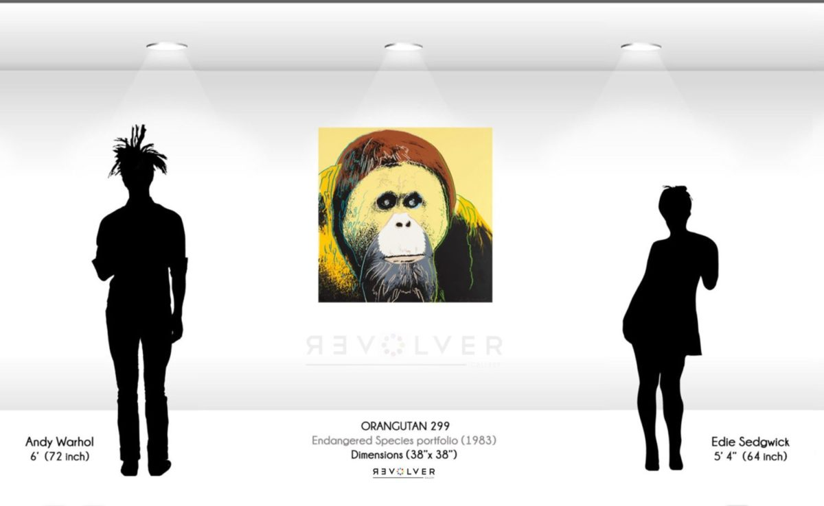 Andy Warhol Orangutan 299