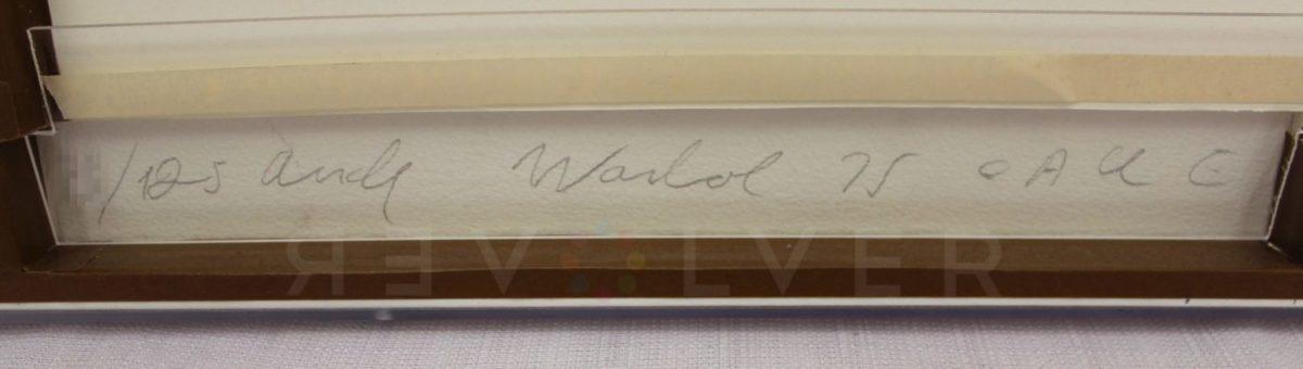 Andy Warhol - Ladies and Gentlemen F.S. II 129 sig blur jpg