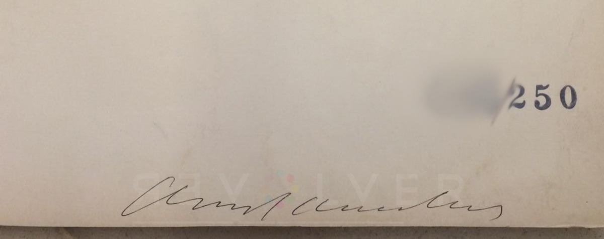 Andy Warhol - Cheddar Cheese F.S. II 63 sig blur jpg