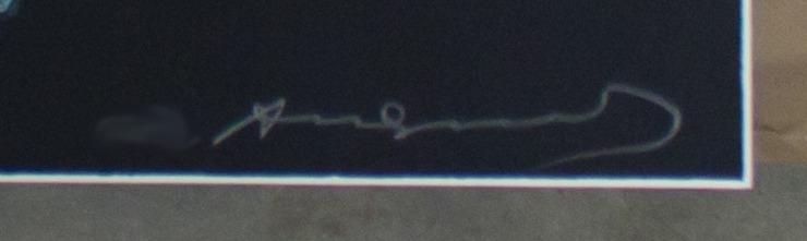 Andy Warhol - Superman F.S. II 260 sig blur jpg