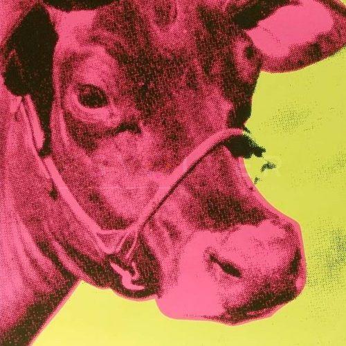 11_cow
