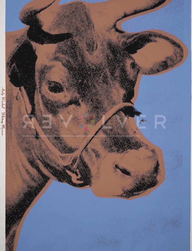 cow 11a