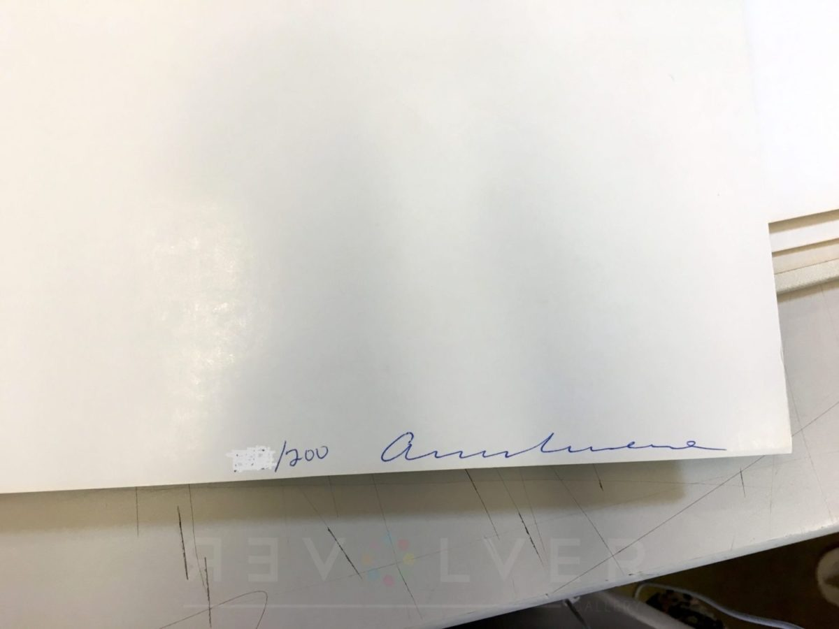 Andy Warhol - Flash 37 sig blur jpg