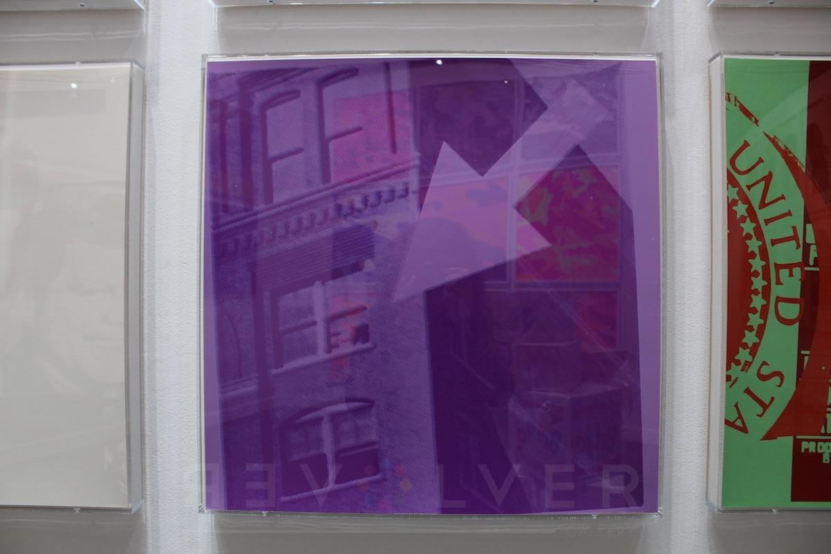 Andy Warhol - Flash 39 jpg